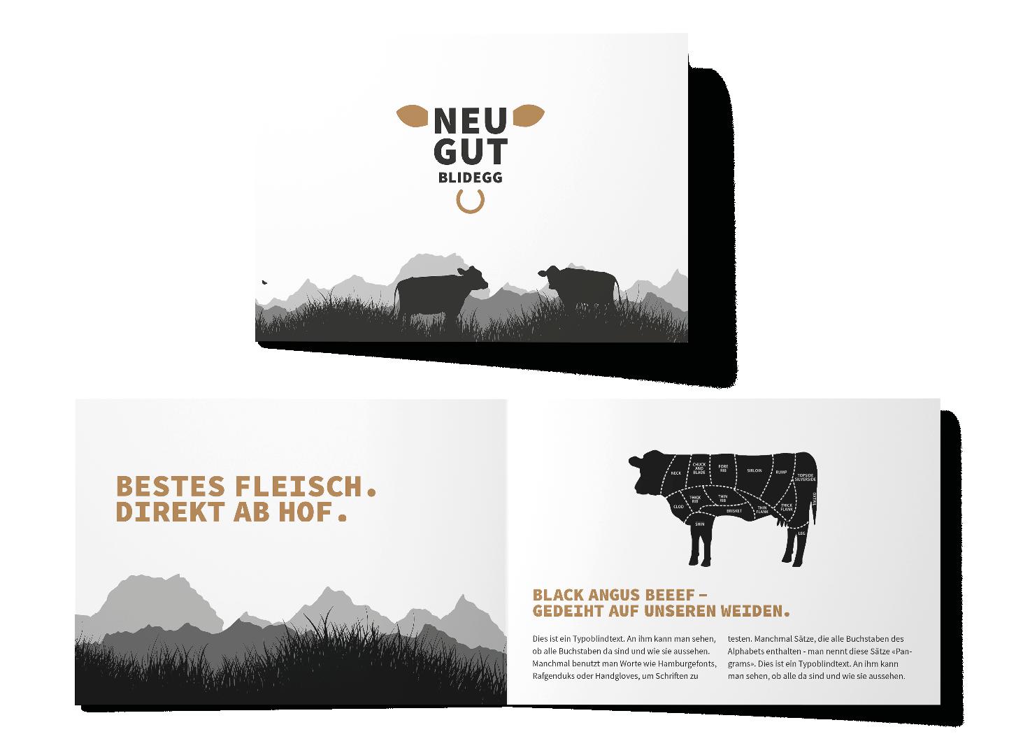 Neugut Angus – Neues Erscheinungsbild, Webseite